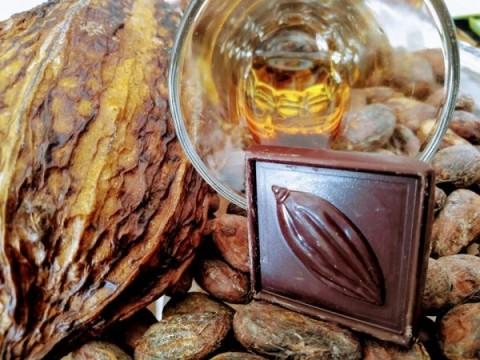 Párování rumu a čokolády Vol.VII